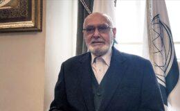Akademisyen Ali Özek vefat etti